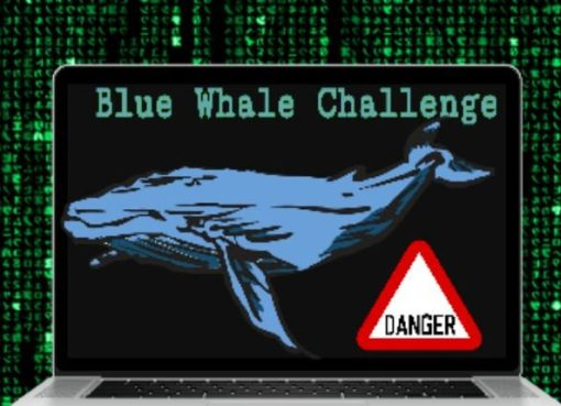 Blue Whale Game, Blue Whale Challenge, Blue Whale Suicide Game, Suicidal Blue Whale