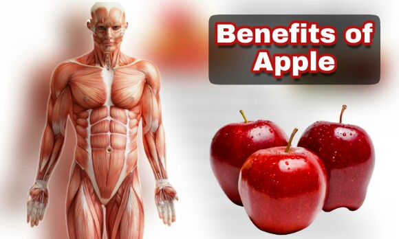 Benefits of Apple, Appple eating benefits, apple consumption benefits, benefits of apple on human body