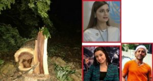 Aarey Tree Cutting protest, Bollywood reaction to Aarey Tree Cutting, Aarey tree cutting agitation