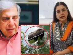 Ratan Tata and Mankea Gandhi on Pregnant elephant killing in Kerala, Ratan Tata on kerala pregnant elephant killing, maneka gandhi on pregnant elephant killing,